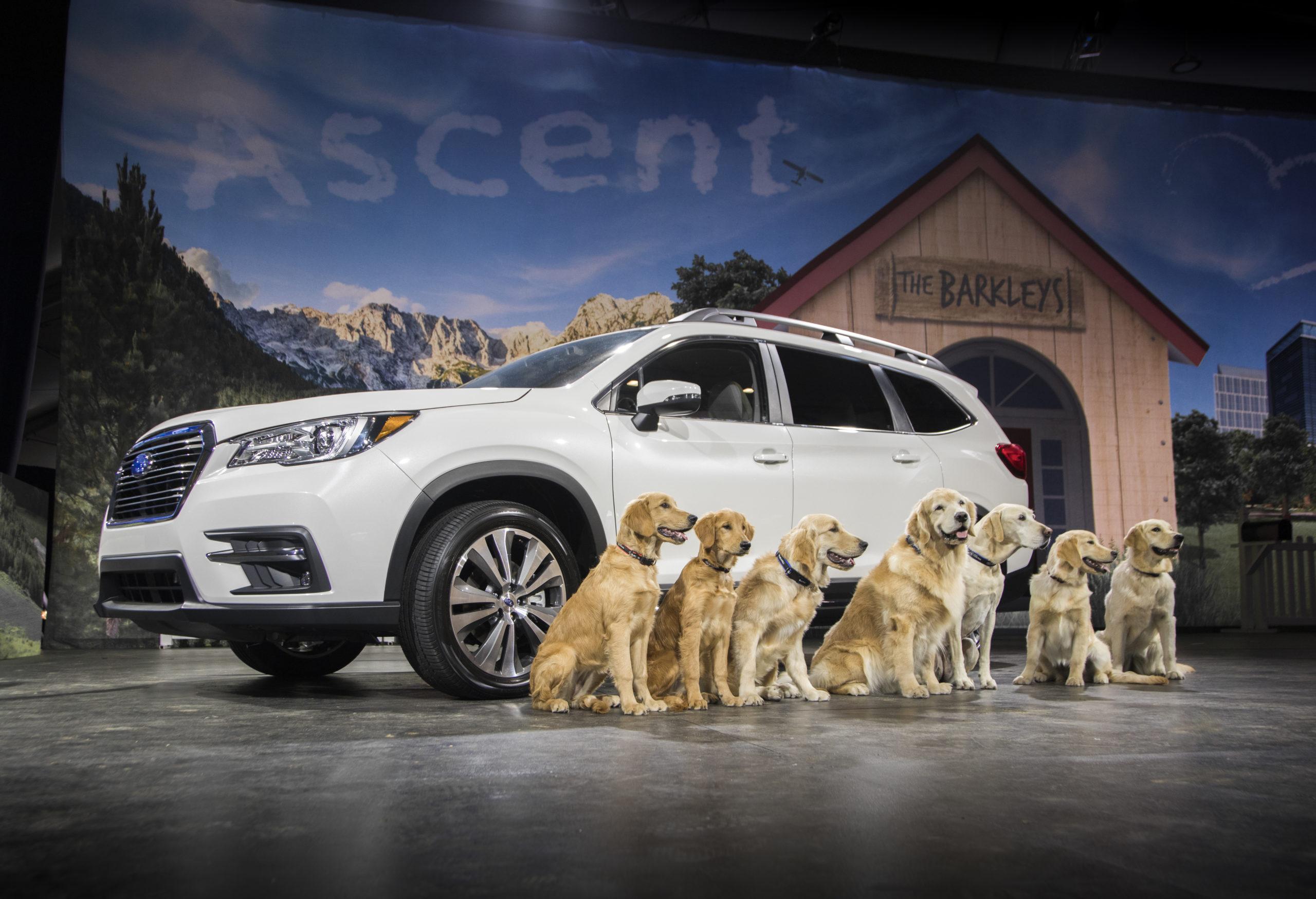 2019 Subaru Ascent AWD
